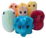 Sjuka gosedjur: Baciller och kryp