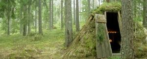 sova i kolarkoja i skogen
