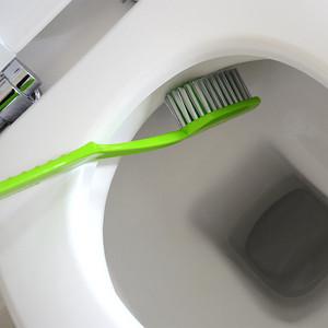 Toalett-Tandborste