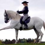 Lyxlektion på Lusitanohäst